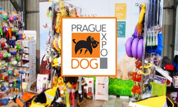 Report: Prague Expo Dog 2016
